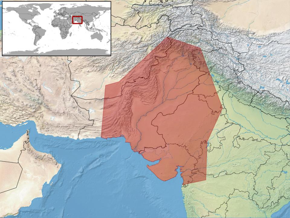 Zona di origine del geco leopardino